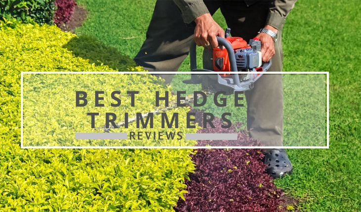 Best Hedge Trimmer Reviews UK