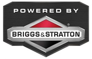 briggs-stratton-lawnmower-engine