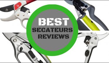 Best secateurs reviews uk
