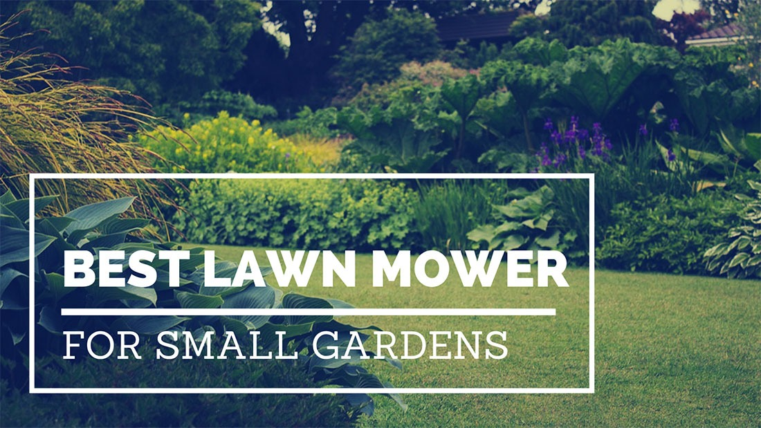 Best lawn mowers for small gardens