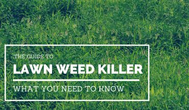 Lawn Weed Killer Guide