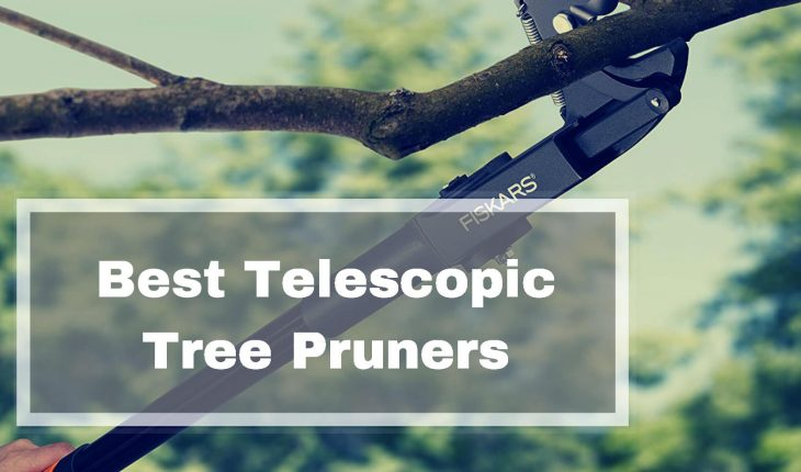 Best Telescopic Tree Pruner Reviews