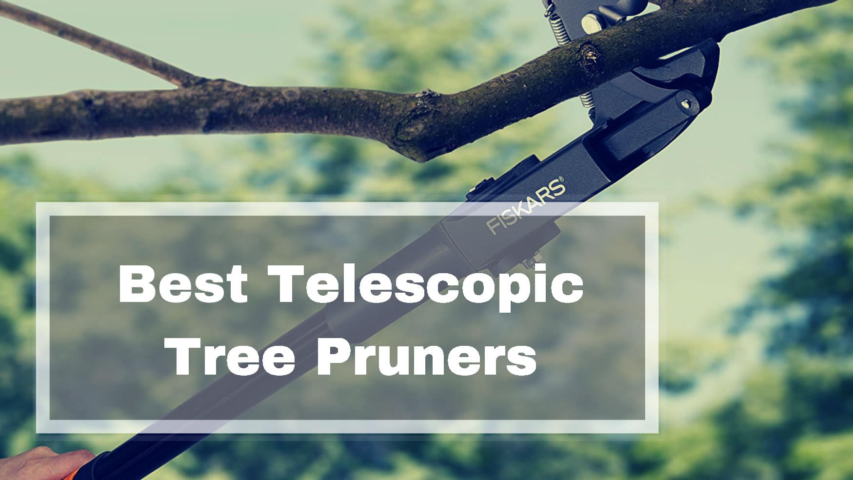 Best Telescopic Long Reach Tree Pruner Reviews Uk Buying