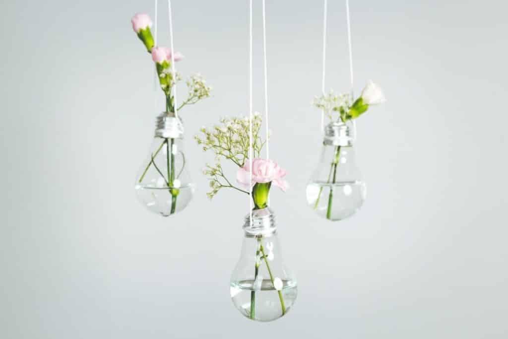 hang diy bulb planters