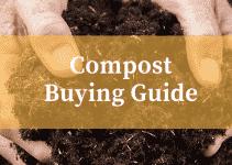 Best Multi Purpose Compost Reviews UK