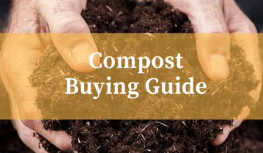 Best Multi Purpose Compost Reviews UK