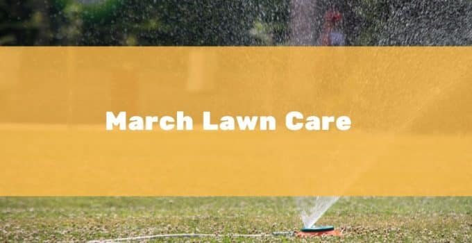 Lawn Care in March