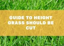 What Height Should I Cut My Grass in the UK?